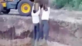 عاقبت تلخ بالا کشیدن کارگرها از گودال محل کار با بیل مکانیکی