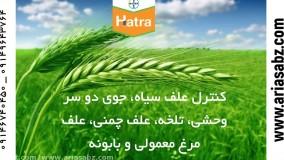 هاترا قوی ترین سم کشنده برای انواع علف هرز |  Hatra