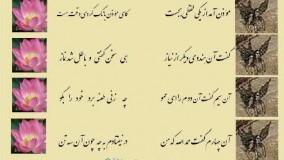 مثنوی معنوی مولانا - چار هندو در یکی مسجد شدند / بهر طاعت راکع و ساجد شدند
