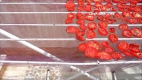 ساده ترین طریقه خشک کردن و پودر کردن گوجه فرنگی