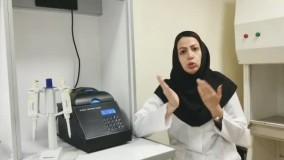 تکنیک الکتروفورز Electrophoresis