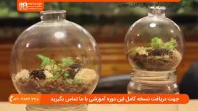 آموزش ساخت تراریوم شیشه ای ( باغ شیشه ای )