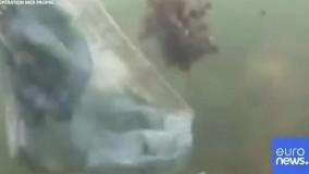 این ویدئو را ببینید تا هیچ ماسکی را زمین نیندازید