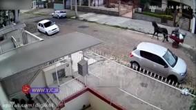 دزدی که به کاهدان زد ؛ شلیک پلیس به سارقی که قصد دزدیدن ماشینش را داشت