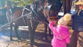 ناستیا و پدر - سفر خانوادگی در سال نو