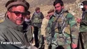 کنایه فرمانده مقاومت پنجشیر به طالبان با یک الاغ !