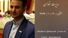معرفی و رزومه کاری ابوالفضل شاهزاده حمزه