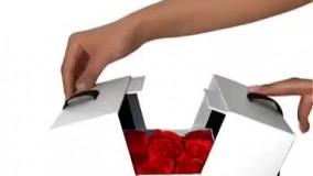 یک تیر و دو نشان: جواهرات با جعبه هدیه خاص