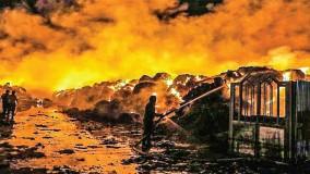 تلاش آتش نشانان ایرانی برای خاموش کردن آتش گسترده در مرز افغانستان