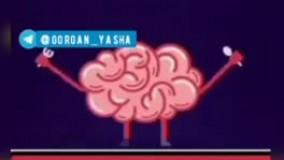 تاثيرات خواب بر روی مغز