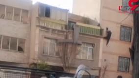 سقوط یک سارق از ساختمان در جوادیه تهران