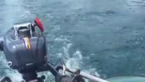 قایق بادی موتوری