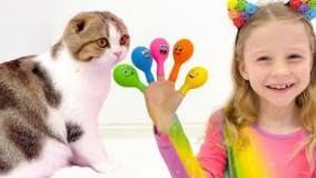 بازی ناستیا با گربه - یاد دادن نام رنگ ها به گربه