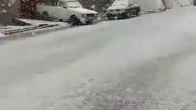 بارش برف در سی سخت