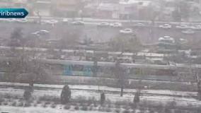 بارش شدید برف در شهر مشهد