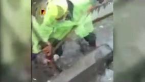 ویدیویی تلخ از تخلیه زباله های جوی آب توسط پاکبانان