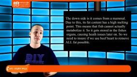 آموزش غذادهی به ماهی دیسکس