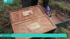 طریقه استفاده از استیک اسید در ضدعفونی کردن کندو زنبور عسل
