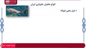 پرورش ماهی خاویار - ماهی خاویار و انواع آن، شرایط پرورش آنها