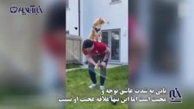 گربه ای با عجیب ترین خصلت و علاقه دنیا !
