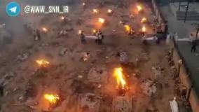 سوزاندن اجساد بیماران کرونایی در دهلی نو