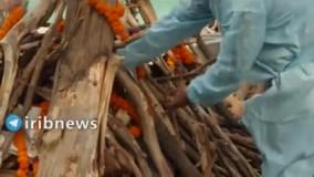 تصاویری وحشتناک از سوزاندن اجساد قربانیان کرونا در هند