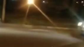 فرار یک قلاده خرس از باغ وحش هویزه در خوزستان