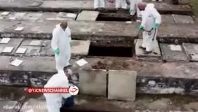 تصاویری از نبش قبرهای قدیمی برای دفن کرونایی ها در برزیل