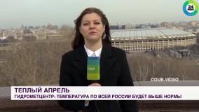 مزاحمت سگ در یک برنامه زنده تلویزیونی روسیه