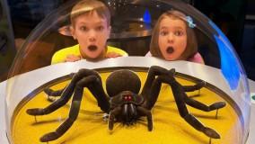 مکس و کتی : سرگرمی در موزه علوم کودکان