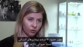 روسیه نخستین واکسن کرونا برای حیوانات را ارائه کرد