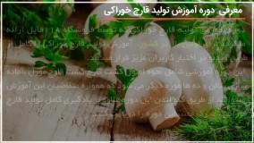 آموزش پرورش قارچ - پرورش و رشد قارچ در ظروف پلاستیکی