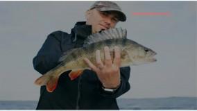 آموزش پرورش ماهی خاویار - آموزش گام به گام ساختن استخر سیمانی