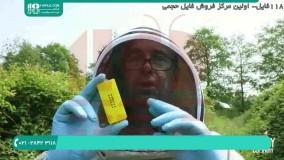 آموزش زنبورداری - تعویض شانه خارجی