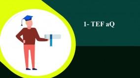 آزمون TEF چیست؟