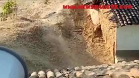 حمله گراز پشمالو وحشی به خانه