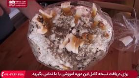 آموزش پرورش قارچ - پروش قارچ ریشی در خانه