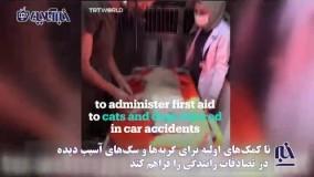 طراحی آمبولانسی برای حیوانات آسیبدیده در ترکیه !
