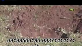 قویترین فلزیاب شعاع زن نقطه زن 09198500180
