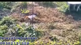 فلزیاب تهرانسر09372131009