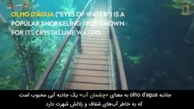 قدم زدن در یک پارک زیر آبی !