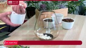 آموزش ساخت تراریوم :: باغ شیشه ای :: تراریوم شیشه ای :: تراریوم ساکولنت زیبا و شکیل