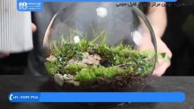 آموزش ساخت تراریوم | تراریوم کاکتوس | تراریوم آویز | ساخت باغ شیشه ای (تراریوم کوچک و ساده)