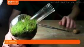 آموزش ساخت تراریوم | تراریوم کاکتوس | تراریوم آویز | ساخت باغ شیشه ای (تزیین تراریوم با گل های نقش ریز)
