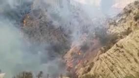 آتش سوزی گسترده در جنگل های کوه نارک گچساران