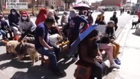 مراسم بزرگداشت پدربزرگ سگ ها در کلیسای کاتولیک
