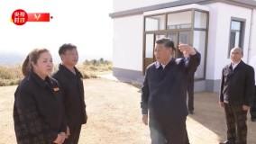 رییس جمهوری خلق چین از مزرعه جنگلی مکانیکی سای هان با
