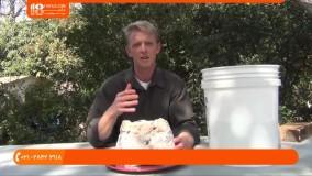 تولید قارچ-پرورش قارچ-  نکاتی برای پرورش قارچ شیتاکه