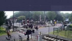 نجات معجزه آسای یک زن از برخورد با قطار