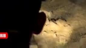 غارنشینان مخوف پایتخت دستگیر شدند